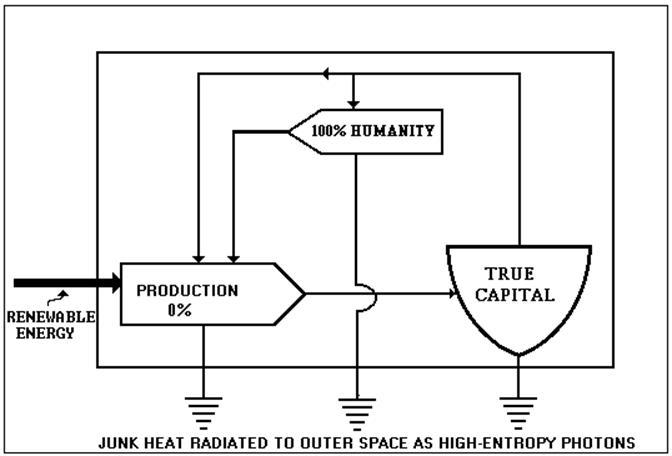 on the preservation of species rh dematerialism net Detroit Diesel S60 Diagram Detroit Diesel S60 Diagram